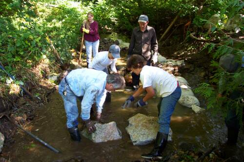 Positioning boulders to make weir